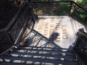 the John T. Brush Stairs from Coogan's Bluff